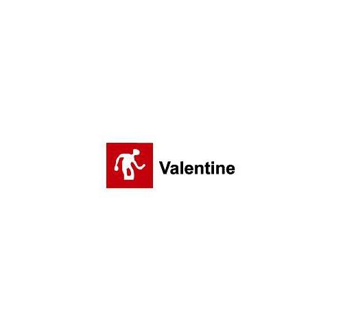 VALENTINE VALREX BRILLANTE VERDE CARRUAJE 750ML